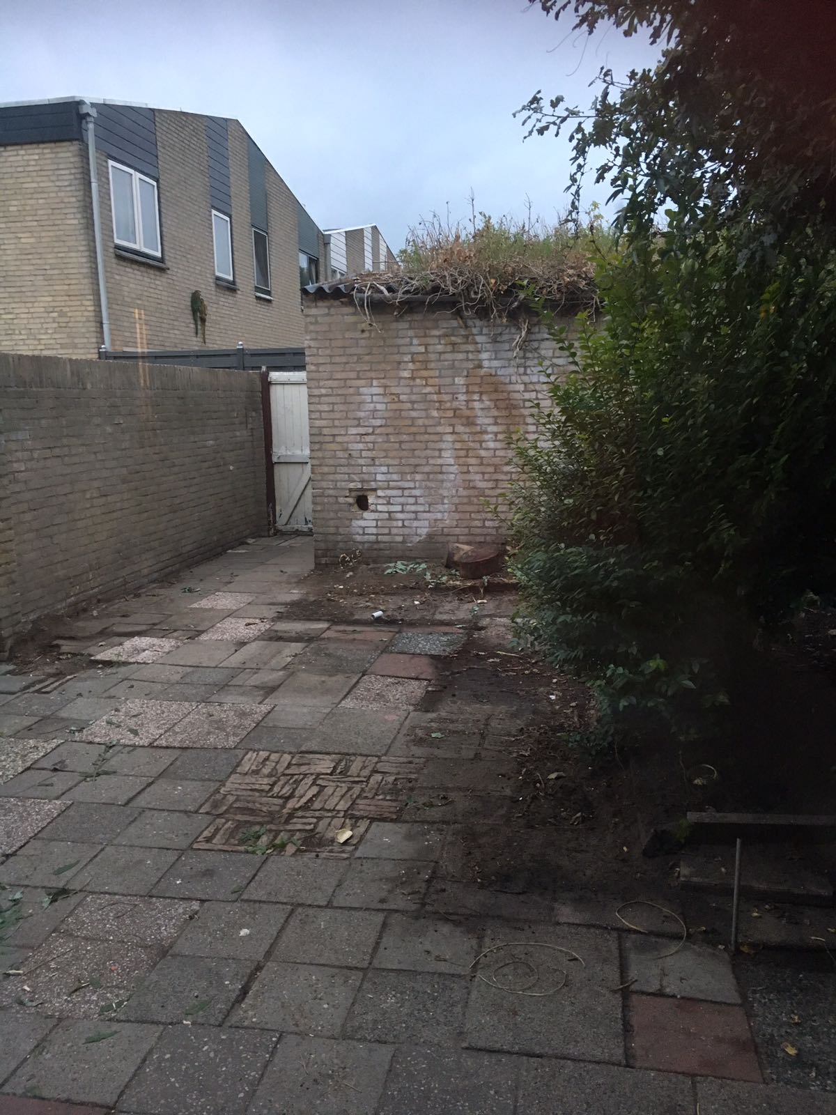 renovatie tuin overkapping